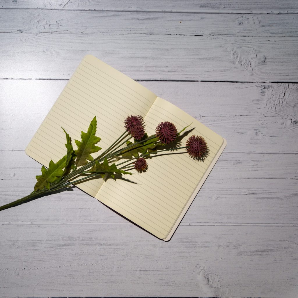 Flatlay image showing an open notebook with purple thistles laying on top - beat the lockdown blues